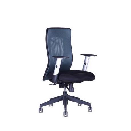 Kancelářská židle CALYPSO XL BP (7 barev)